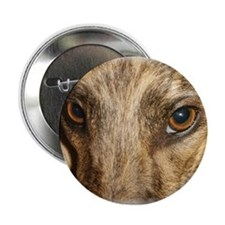 Beautiful eyes greyhound Button