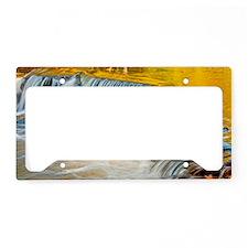 bondFalls_HDR_shoulderbag License Plate Holder