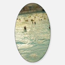 World Waterpark /Wavepool/ (NR) Edm Decal