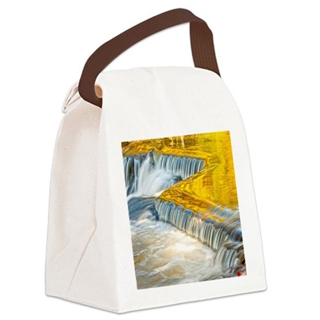 bondFalls_HDR_8X10 Canvas Lunch Bag