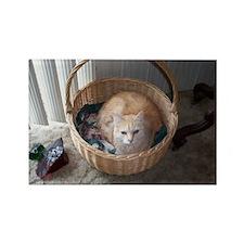 AJ in his basket Rectangle Magnet