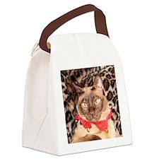 IMG_0271_YO_sm_sq Canvas Lunch Bag