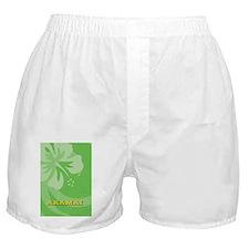 Akamai-nook Boxer Shorts