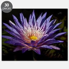 Purple Lotus Puzzle