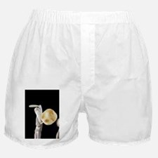 Ypical carved caribou antler figure,  Boxer Shorts