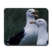 Great Black-backed seagulls Scotia, Marg Mousepad