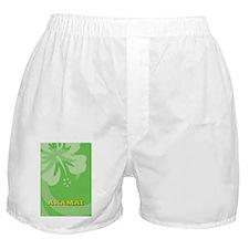 Akamai-Kindle Boxer Shorts