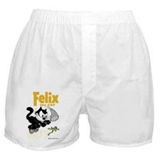 jumping frog Boxer Shorts