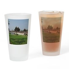 AsianArchitecture Drinking Glass