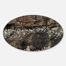 Bonaventure National Park, world's  Sticker (Oval)