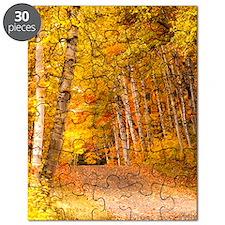 AutumnFoliageRural_Kindle Puzzle