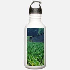 Tobacco farm. Water Bottle