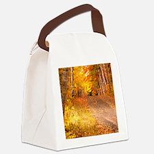 AutumnFoliageRural_9X12 Canvas Lunch Bag