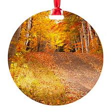 AutumnFoliageRural_9X12 Ornament