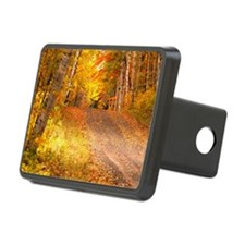 AutumnFoliageRural_9X12 Hitch Cover