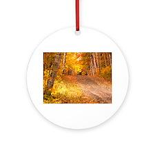AutumnFoliageRural_9X12 Round Ornament