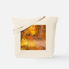AutumnFoliageRural_9X12 Tote Bag