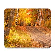 AutumnFoliageRural_9X12 Mousepad