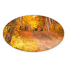 AutumnFoliageRural_9X12 Decal