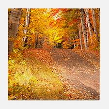 AutumnFoliageRural_9X12 Tile Coaster