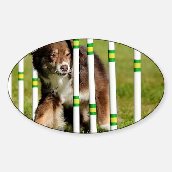 10_Spyder Sticker (Oval)