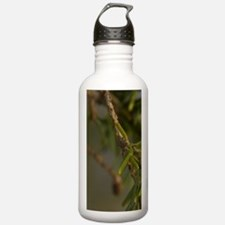 Broken Island Group Water Bottle