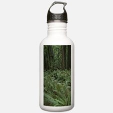 Huge Ferns and Trees a Water Bottle