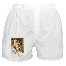 Sheep3gB Boxer Shorts