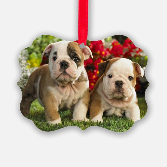 cute_bulldog_puppies_wide_wallpap Ornament