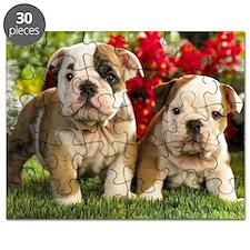 cute_bulldog_puppies_wide_wallpaper Puzzle