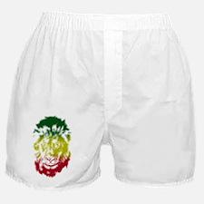 2000x2000lionstencil4bclear Boxer Shorts