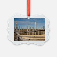 L'Anse Aux Meadows. Archaeologica Picture Ornament