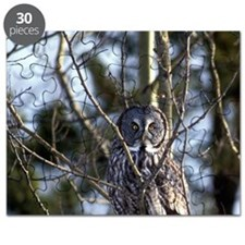 Great Gray Owl (Strix nebulosa) sits on tre Puzzle