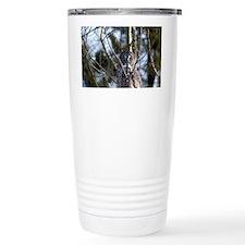 Great Gray Owl (Strix nebulosa) Travel Mug
