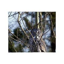 Great Gray Owl (Strix nebulosa) sits Throw Blanket