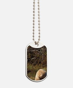 black bear Dog Tags