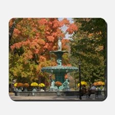 Fountain Box Fall Mousepad