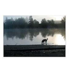 Junie_river_mist Postcards (Package of 8)