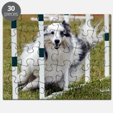 10_Campbell Puzzle