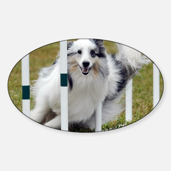 10_Campbell Sticker (Oval)