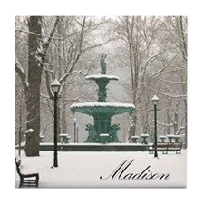Winter fountain box Tile Coaster