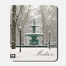 Winter fountain box Mousepad