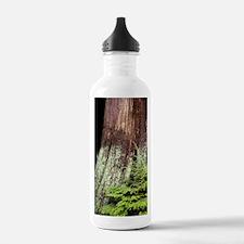and western red cedar Water Bottle