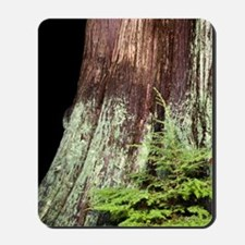 and western red cedar Mousepad