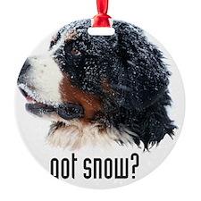 got_snow_Kindle sleeve Ornament
