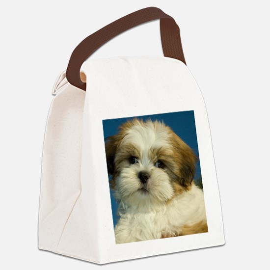 257540_8157 Canvas Lunch Bag