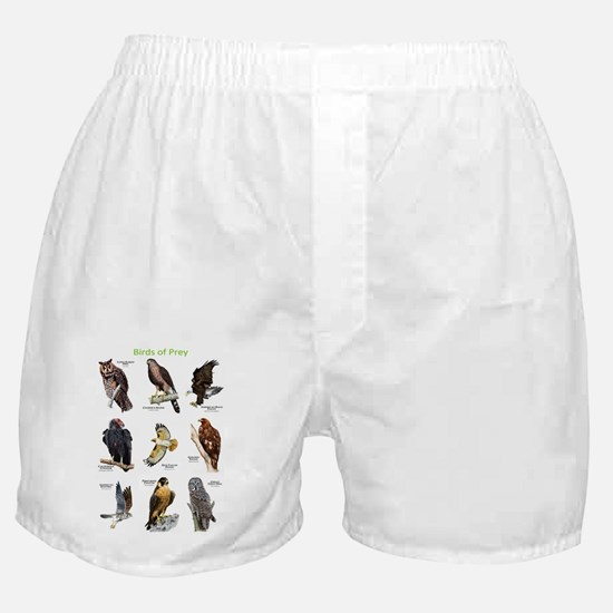 Birds of Prey Boxer Shorts
