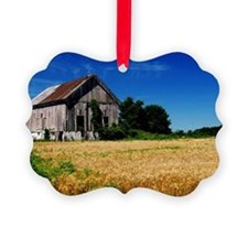 delaware barn Ornament