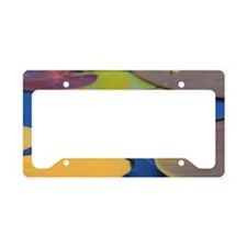 Picture 1195-fair License Plate Holder