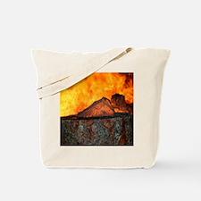 IMG_4096 18x24 C Tote Bag